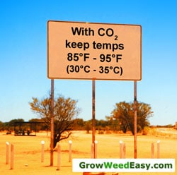 Co2 for cannabis plants