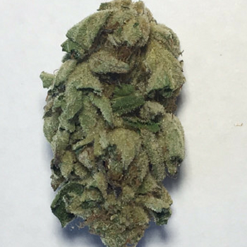 Bay area weed strains