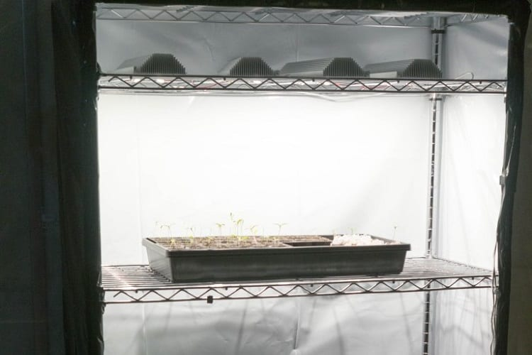 Diy small grow box