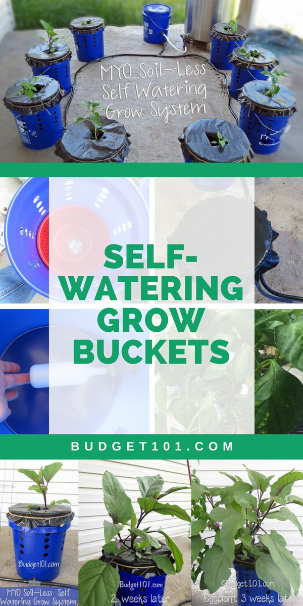 Grow buckets for sale