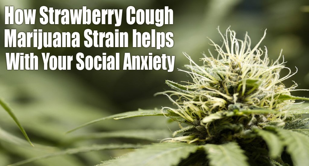 Strawberry cough anxiety
